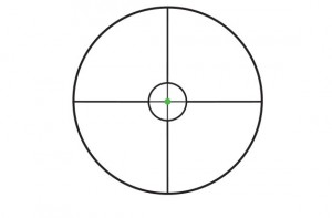 Trijicon Accupoint 1-6x24 Scope